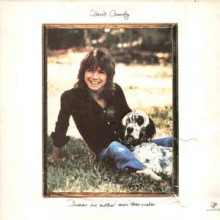 David Cassidy - Dreams Are Nuthin' More Than Wishes....
