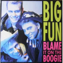 Big Fun ‎– Blame It On The Boogie