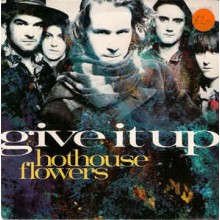 Hothouse Flowers ‎– Give It Up