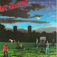 Mr. Mister ‎– Welcome To The Real World