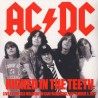 AC/DC ‎– Kicked In The Teeth