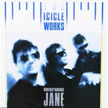 The Icicle Works – Understanding Jane