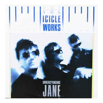 The Icicle Works ‎– Understanding Jane