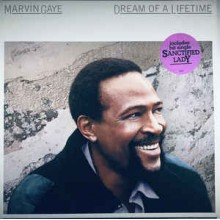 Marvin Gaye ‎– Dream Of A Lifetime