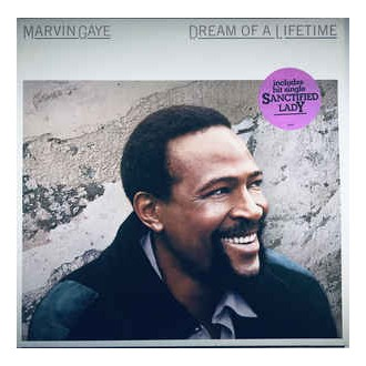 Marvin Gaye – Dream Of A Lifetime