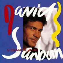 David Sanborn ‎– A Change Of Heart